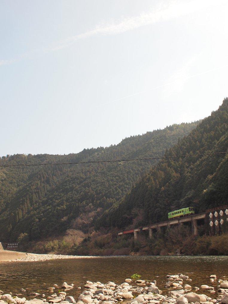 きれいな川と「森林のグリーン」