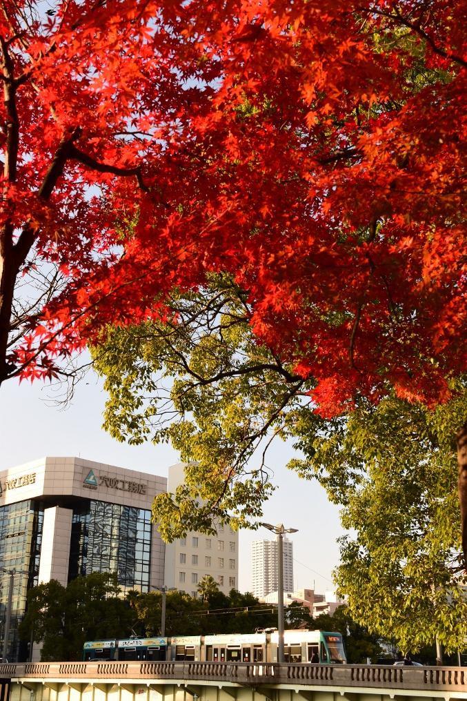 広島市内の秋