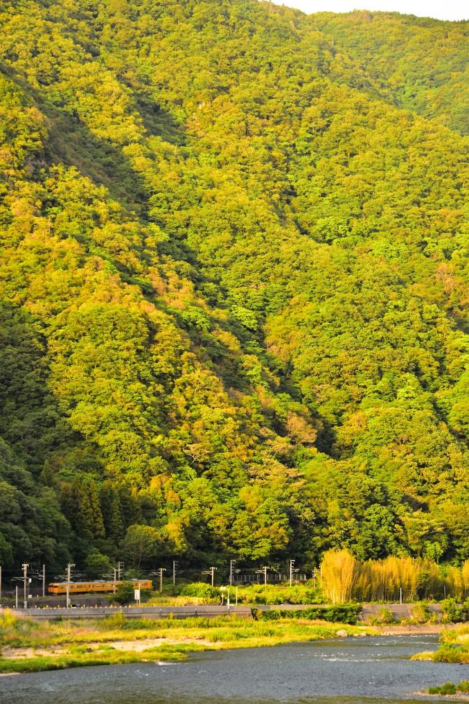 高梁川と山