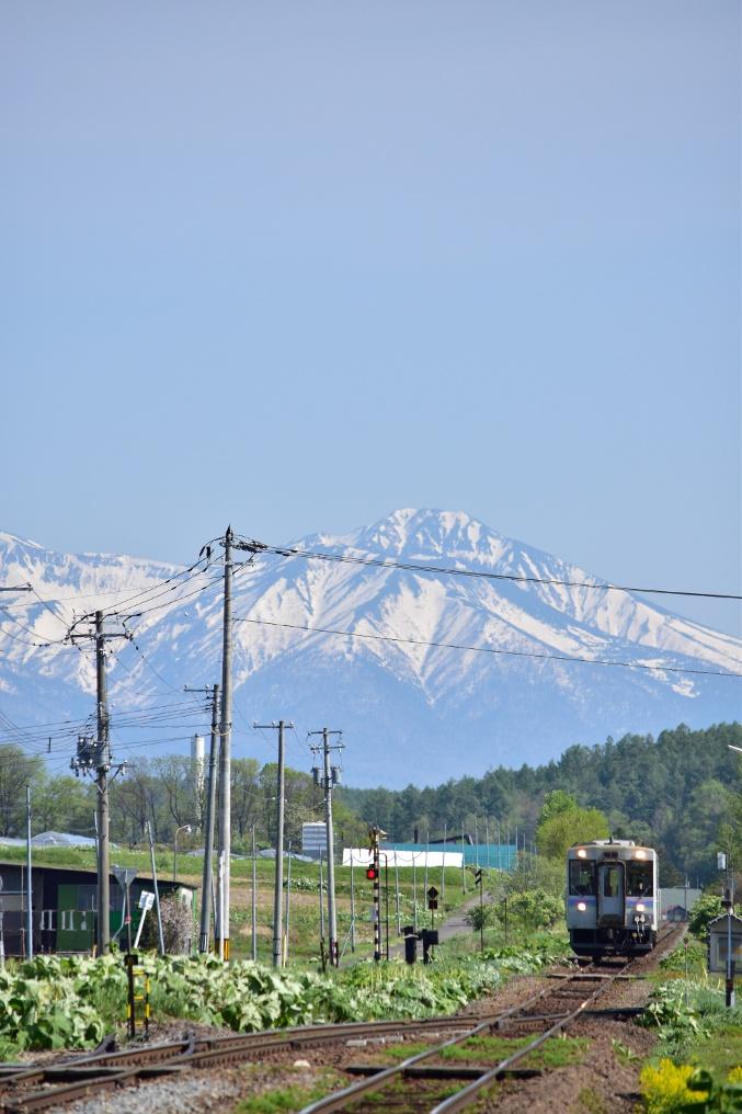 雪山を背景に気動車