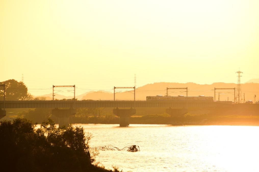 金色に輝く高梁川と電車